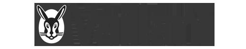 Vaillant Logo