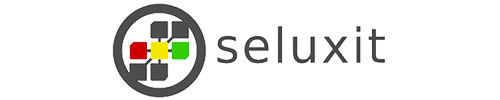 seluxit Logo