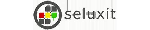 seluxit Logo